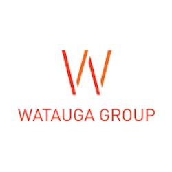 Cybear Interactive, a Watauga Group Company logo
