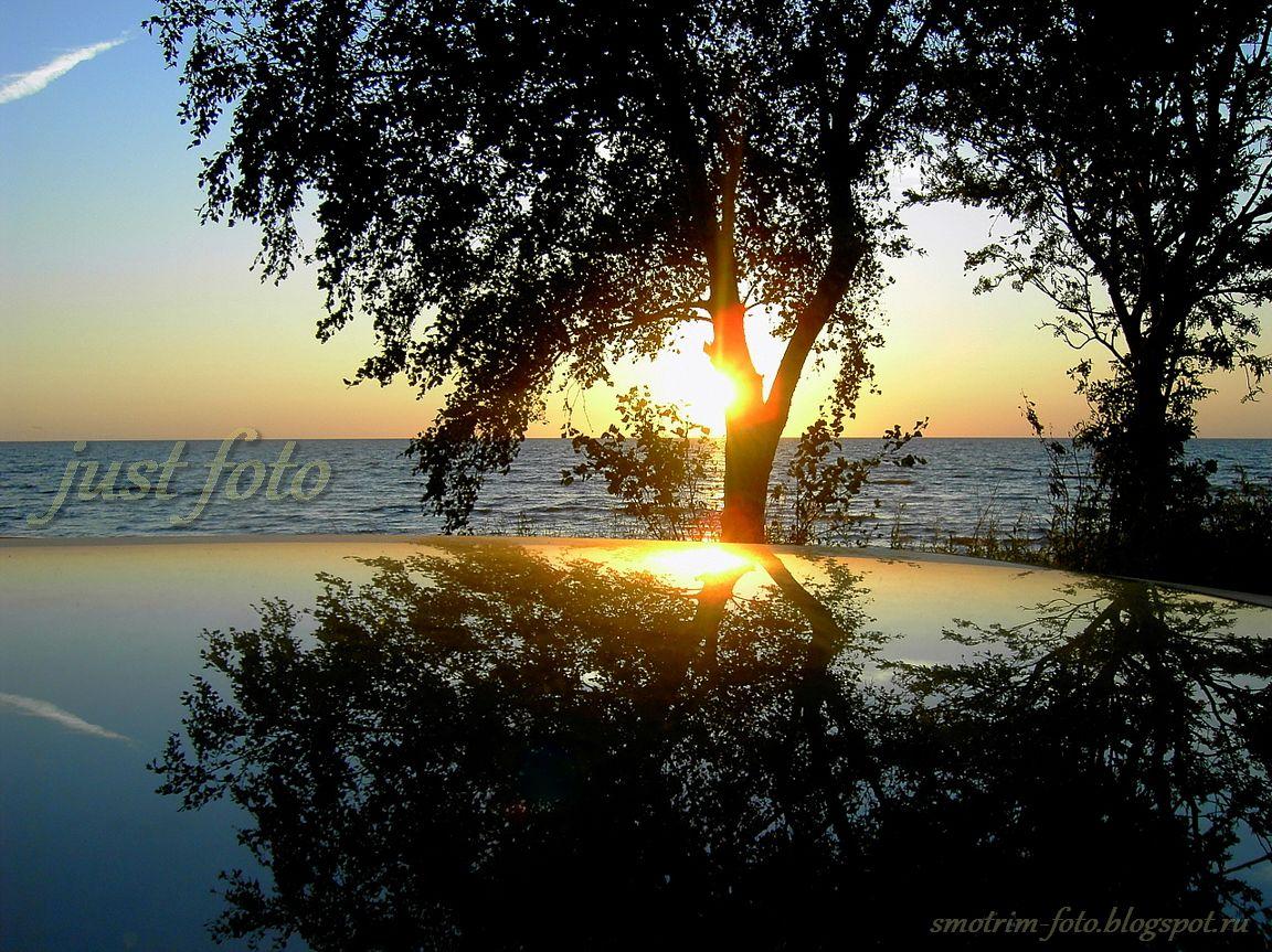Чудеса на Чудском озере фото