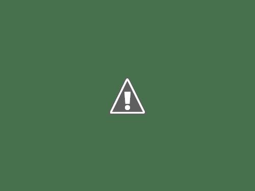 18 05 2013 31+copy - Кошки ))