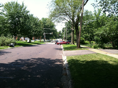 driveways, cars, trees, stoplight, crosswalk