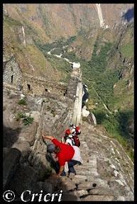 Un mois aux pays des Incas, lamas et condors (Pérou-Bolivie) - Page 2 WaynaP
