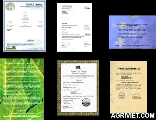 Agriviet.Com-gi%25E1%25BA%25A5y_ch%25E1%25BB%25A9ng_nh%25E1%25BA%25ADn.jpg
