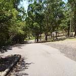 Gently downhill trail at Richley Reserve (401671)