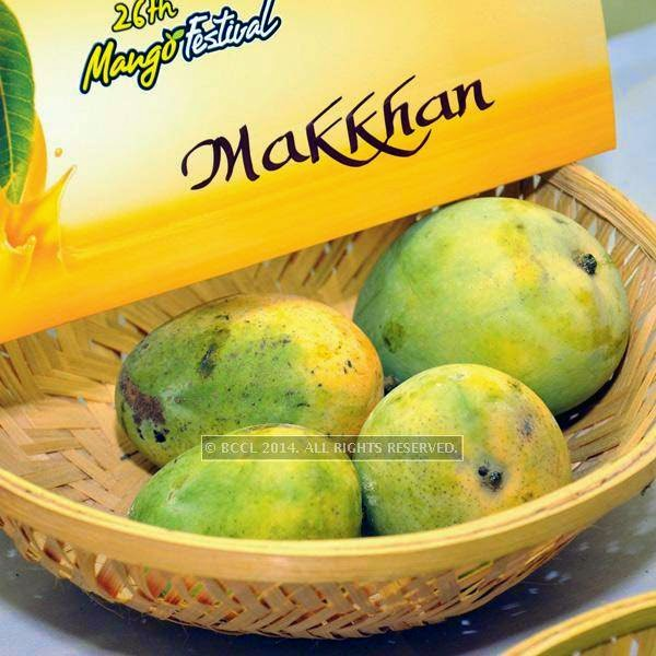 Makkhan mango at the 26th Mango Festival, organised by Delhi Tourism at Dilli Haat, Pitampura, Delhi.