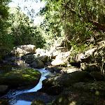 small cascades on Calna Creek  (377474)