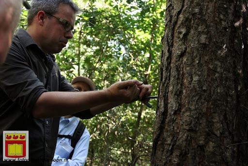 excursie in bossen  van overloon 18-08-2012 (25).JPG
