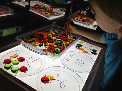 counting plates for math on the light table