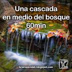 Una cascada en medio del bosque 60min