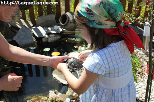 Rosi y Paola soltando las tortugas en el estanque de su jardín (Santiago de Compostela)