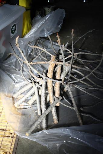 Tenkara net branches
