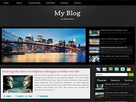 spyder  Wordpress Theme