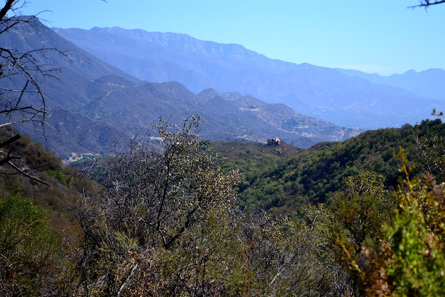 look down Kennedy Canyon, with 'The Rocks' to the right
