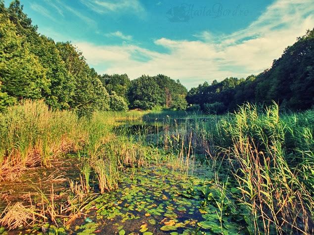 lacul lui eminescu iulie 2013