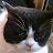 Wenndie Clark avatar image