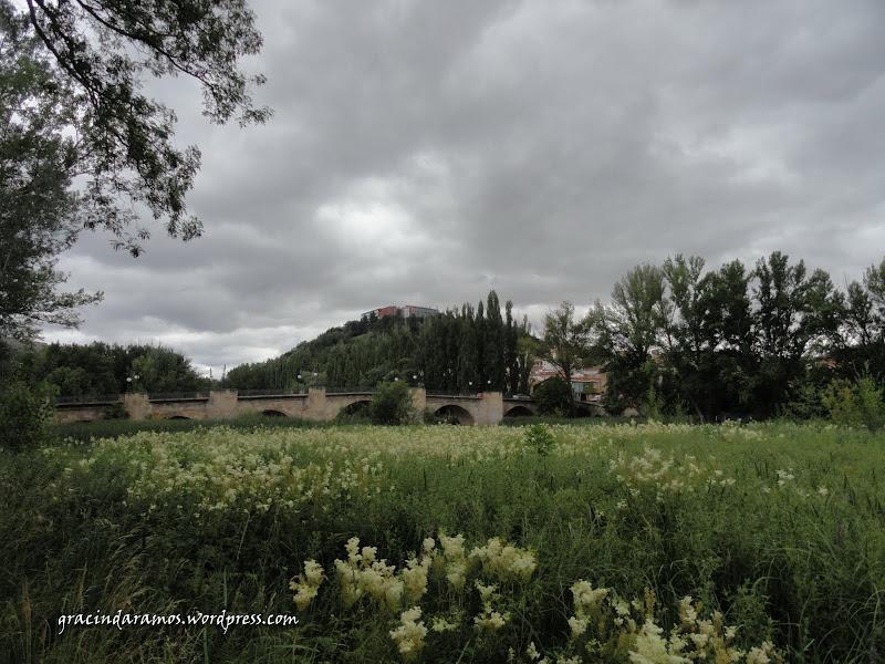 espanha - Passeando pelo norte de Espanha - A Crónica - Página 3 DSC05174
