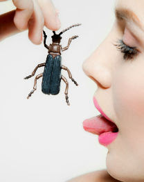 Can Eating Insects Save the World ?