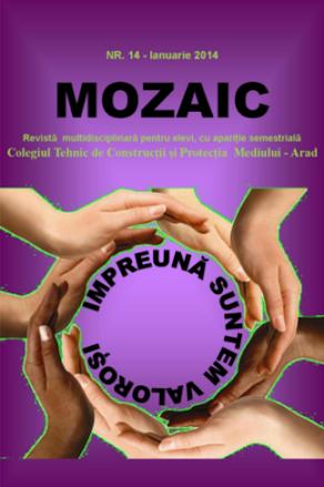 ed4_liceu_mozaic_COLEGIUL TEHNIC_DE CONSTRUCȚII ȘI PROTECȚIA MEDIULUI_arad_ARAD