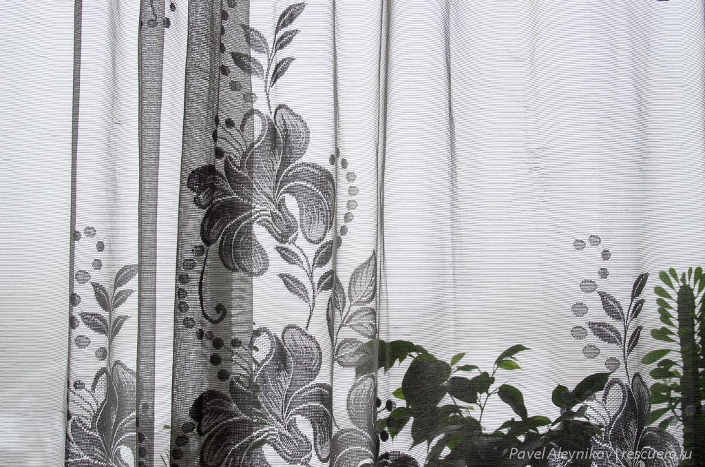 Снимок Nikon AF Nikkor 28-80mm f/3.5-5.6D