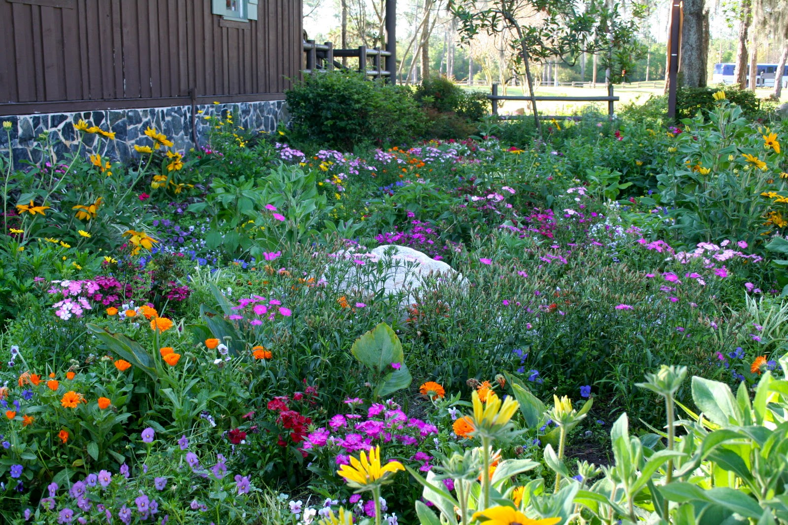 Milkweed Gardens Places Butterfly Garden At Disney S Ft