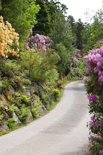 Cragside House in full bloom - Things to do in northumberland