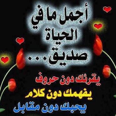 محمد نبيل's profile photo