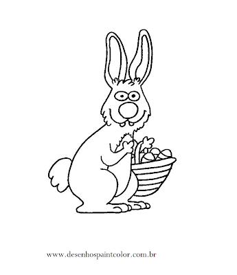 Coelho E Esquilo Para Colorir Desenho De Animais Infantis Pelauts