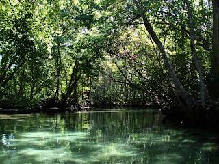 Weeki Wachee Springs State Park | Florida Hikes! |Weeki Wachee Weather