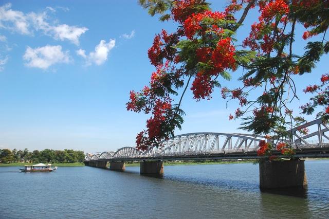 Hoa Phượng bên dòng sông Hương
