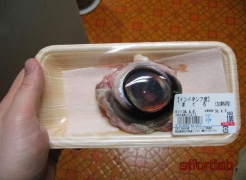 tuna-eyeball