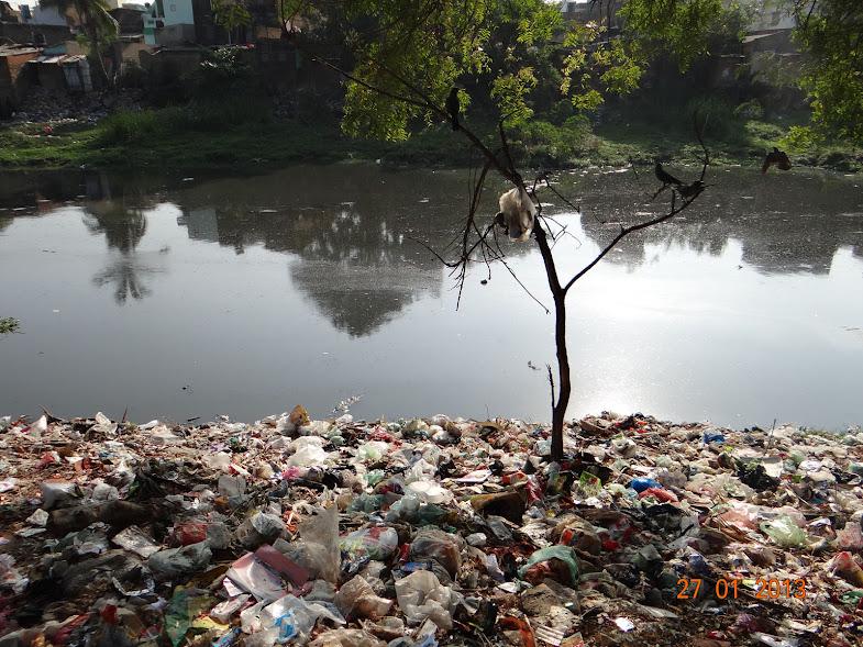 Garbage Dump in Brewery Road, Shenoy Nagar
