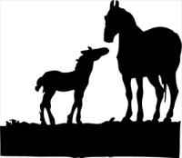 mare-and-foal.jpg