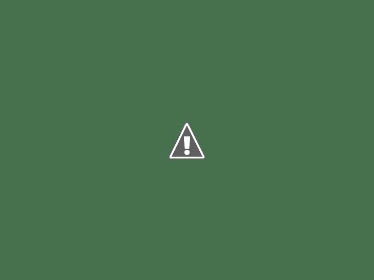 Koukounaries Beach Skiathos (15 Best Beaches in Greece).