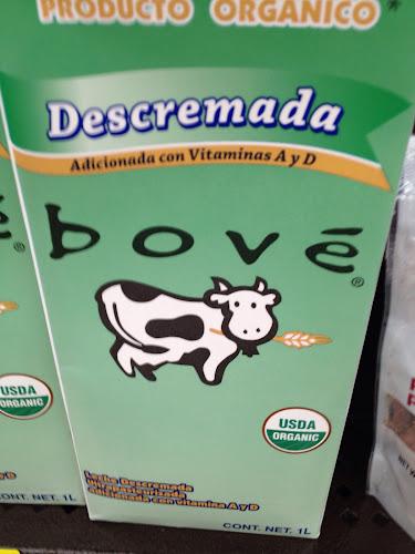 Jose bove lait