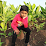 Vishal Somkuwar's profile photo