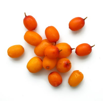 Sea buckthorn…or…why it is important to read cosmetic labels too!