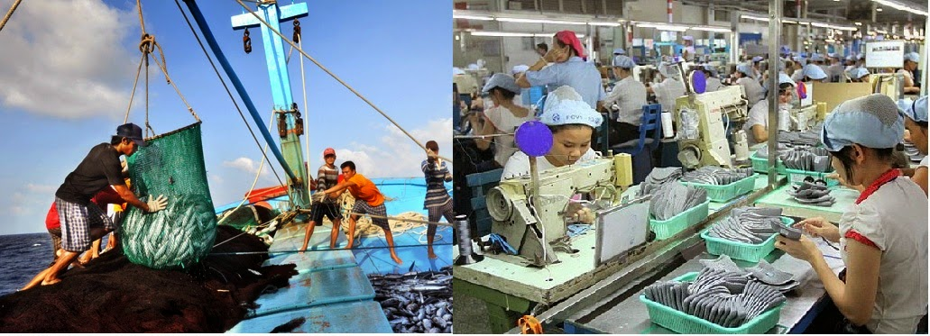 so sánh vui giữa xuất khẩu lao động và đánh cá xa bờ
