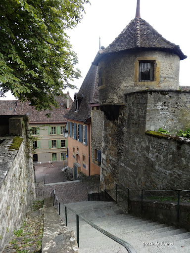 passeando - Passeando pela Suíça - 2012 - Página 14 DSC05317