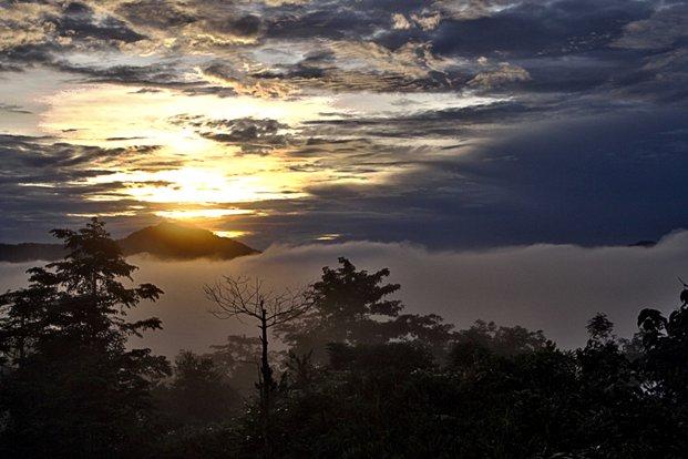 Morning Sunrise in Danum Valley