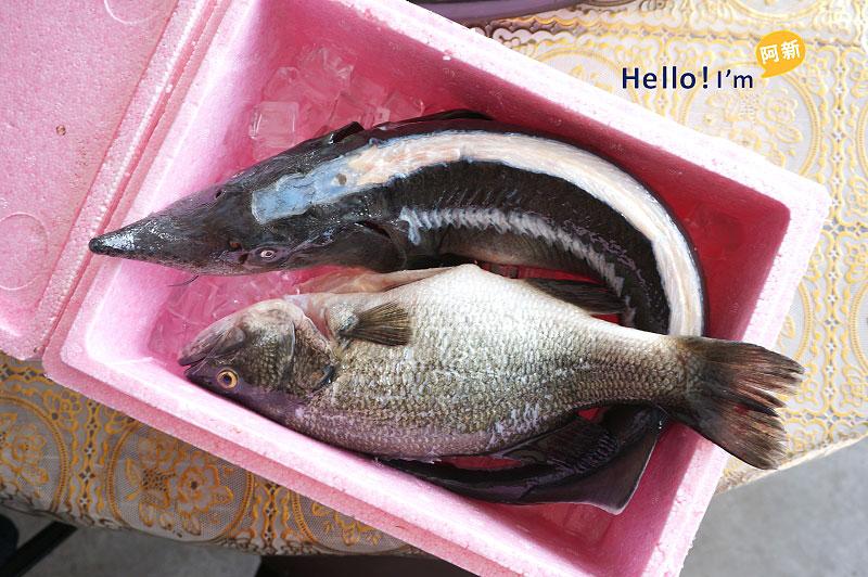 沙里仙鱘龍魚餐廳-4