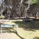 Hegartys Bay camping area (106426)