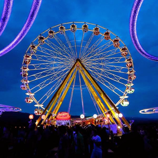 Revellers walk past a ferris wheel during the 39th Paleo Festival in Nyon July 23, 2014.