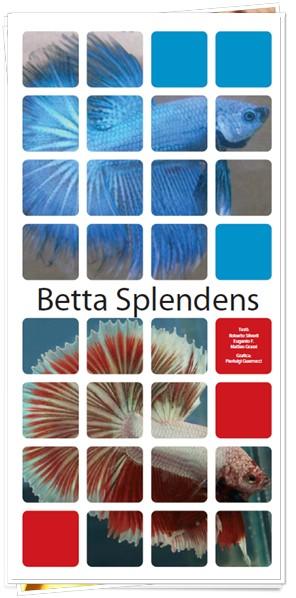 Betta splendens: Istruzioni per l'uso