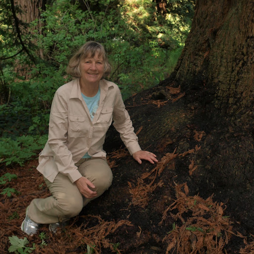 Susan Mcdougall