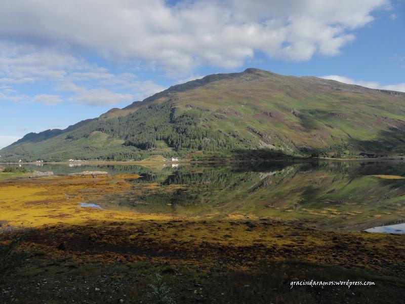 - Passeando até à Escócia! - Página 15 DSC04034