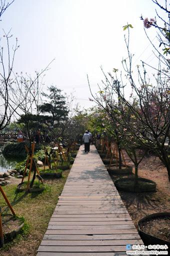 芬園花卉生產休憩園區 - 木棧步道