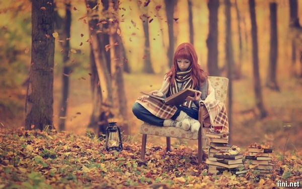 ảnh cô gái ngồi ghế trong rừng thu