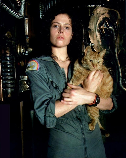 Sigourney Weaver and a cat 3