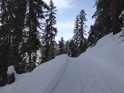Winterlandschaft - einfach zauberhaft