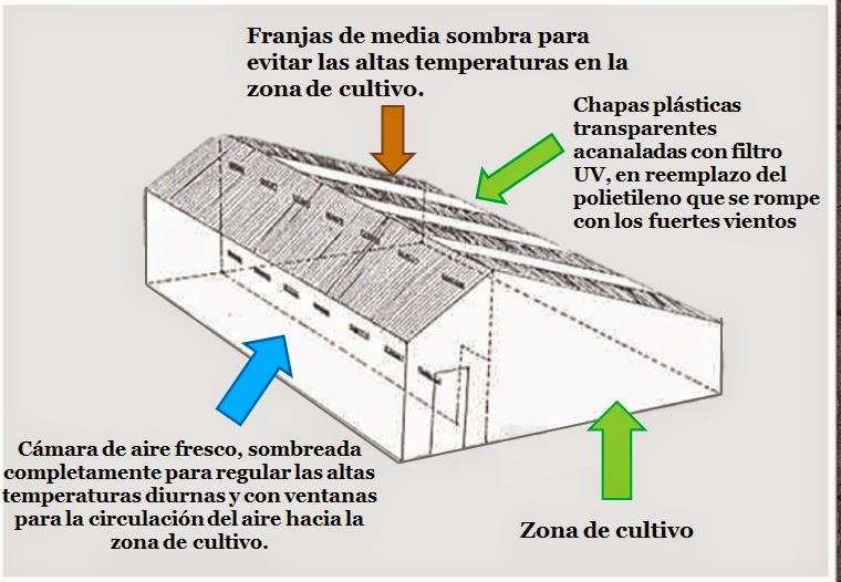 Invernadero andino para huerta ideame for Construccion de viveros e invernaderos