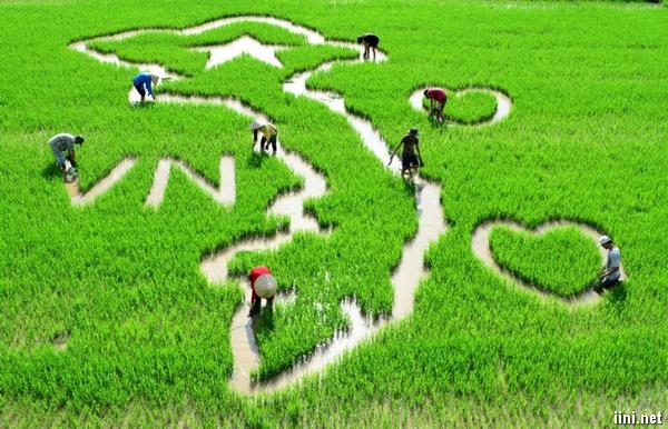 thơ quê hương Việt Nam
